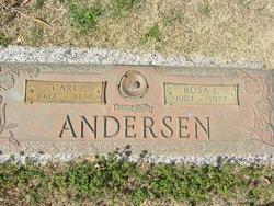Rosa E. Andersen