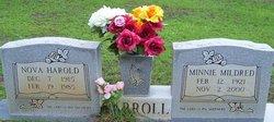 Minnie Mildred Carroll