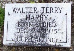 Walter Terry Harry