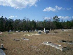Alligator Cemetery