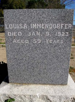Louisa Immendorfer