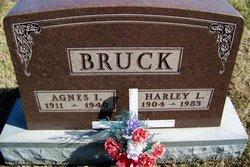 Harley L Bruck
