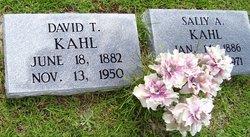 David T Kahl