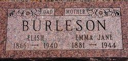 Emma Jane <I>Linn</I> Burleson