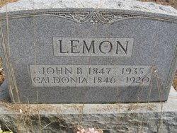 Caldonia <I>Pribble</I> Lemon