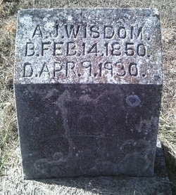 Andrew Jackson Wisdom