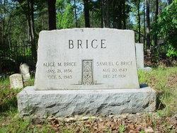 Alice M Brice