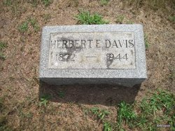 Herbert E Davis