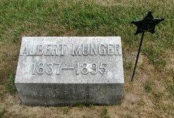 Albert P Munger