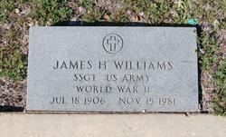 James Harvey Williams