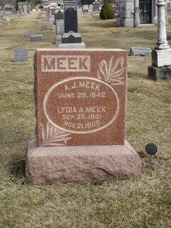 Lydia A. Meek
