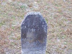 Solomon L Todd