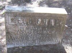 Ann Barnwell Elliott