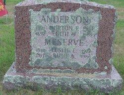 Ruth Emily <I>Anderson</I> Meserve