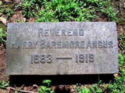 Rev Harry Baremore Angus