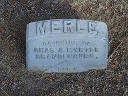 Merle Brandenburg