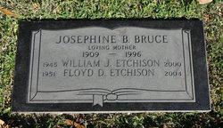 William James Etchison