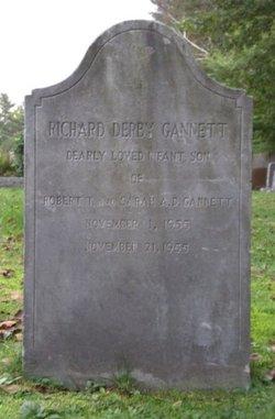 Richard Derby Gannett