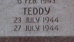 Teddy L Brailsford