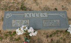 "Sarah Ann ""Sallie"" <I>Newman</I> Allen"