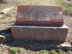 Lorenzo D. Brinker