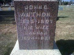 John Gustave Anthon