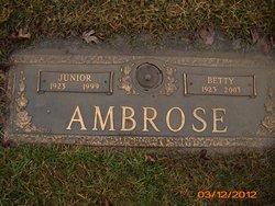 Betty J. Ambrose