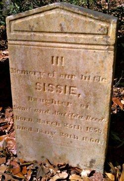 Sissie Reed