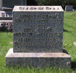 Abraham Gibson