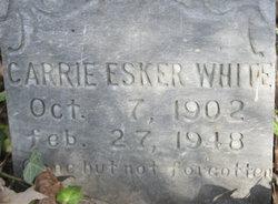 Carrie Esker <I>Mabe</I> Abbott