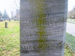 David W. Wehrly