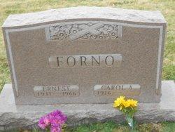 Carol Ann Forno