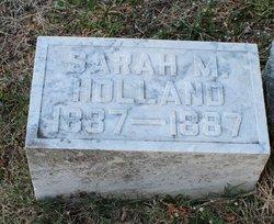 Sarah M Holland