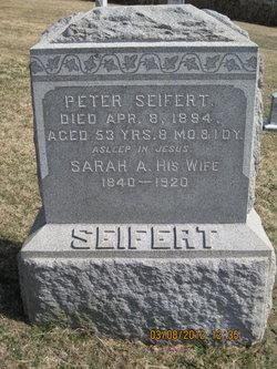 Sarah A Seifert