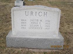Anna E Urich