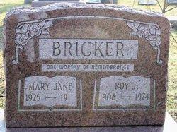 Mary Jane Bricker