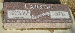 Leo L Larson