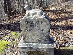 Thomas H. Bray