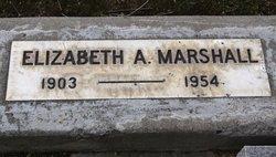 Elizabeth A Marshall