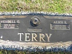Alice S. <I>Rabe</I> Terry