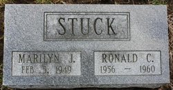 Marilyn J Stuck