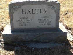 Sarah Jane <I>Finkey</I> Halter