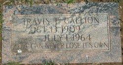 Travis T. Gallion