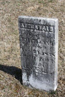 Archibald McClelland