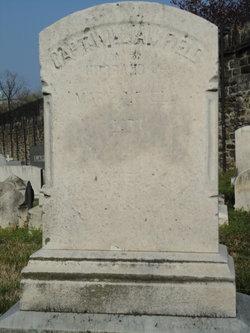 Capt William Field