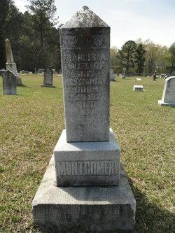 Frances A <I>Milligan</I> Montgomery