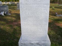 Caroline <I>Lowdermilk</I> Rush