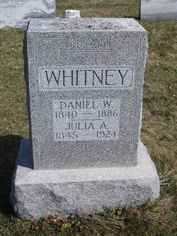 Daniel W Whitney