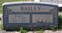 Thomas Elmore Bailey