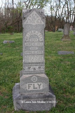 William J Fly